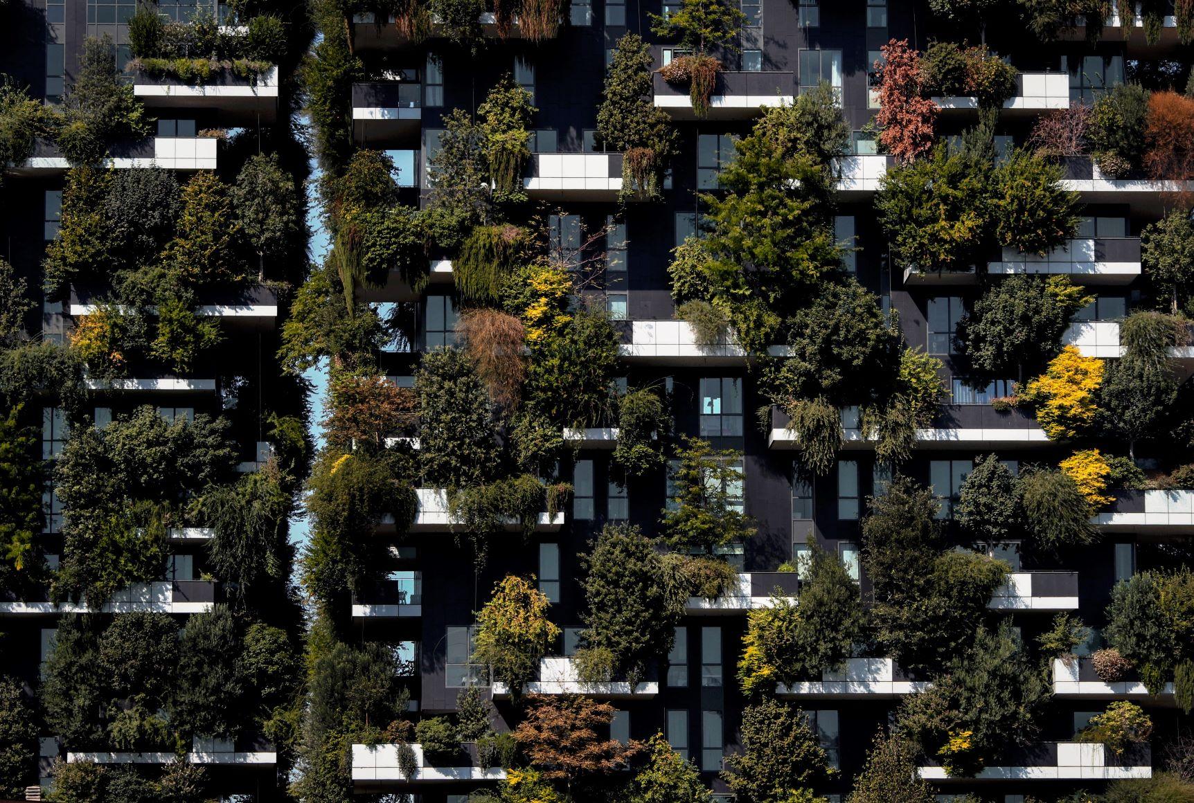 Environmentally Responsible Construction
